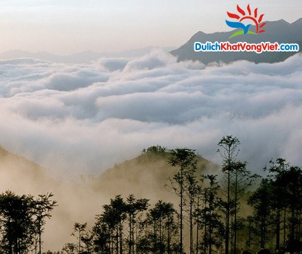 Mây trắng bồng bềnh nhìn từ đỉnh Fansipan