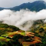 Núi rừng sapa Lào Cai