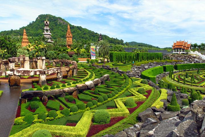 Vườn hoa Nong Nooch với nhiều loài hoa đua nhau khoe sắc