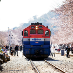 Ga tàu hỏa ở Jinhae